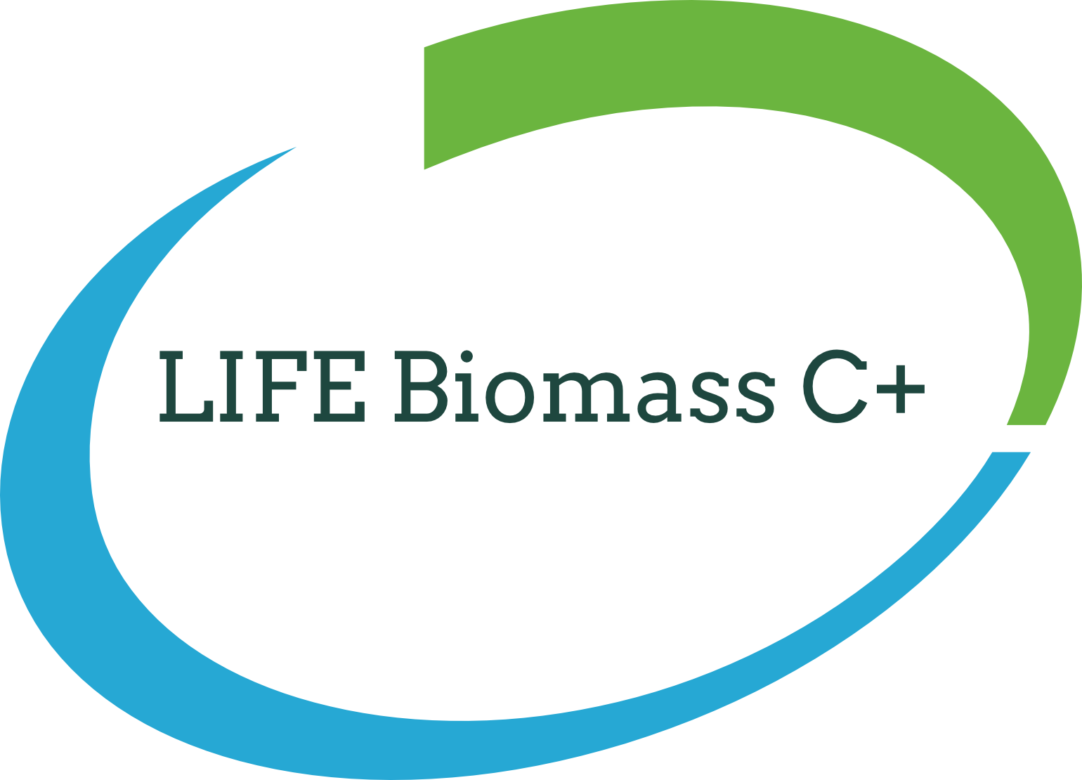 Biomass Carbon Positive