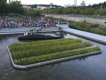 An island of cattails serves as the setting of an environmental performance